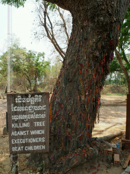 Phnom Penh Killing Tree