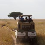 Serengeti Jeep